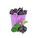 Food-United Felsenbirne Beeren Getrocknet 125g Premium Qualität