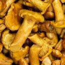 Food-United Pfifferlinge mittel Speise-Pilz 1 Dose Füllmenge 800g ATG 455g