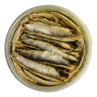 Food-United Fisch - SARDELLEN-FILETS 280g in Sonnenblumen-Öl kaltgegart